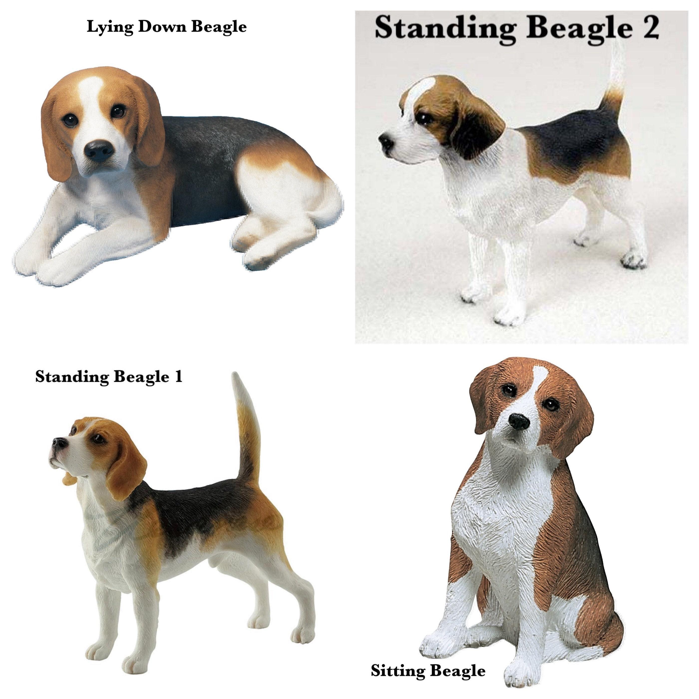 "Beagle Hound Dog Figurine 3.75/"" High Highly Detailed New In Box"