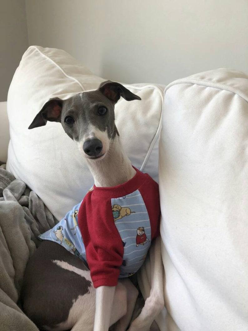980cf83829c4 Ready to Ship Small Baseball style T shirts. Cute Sight hound