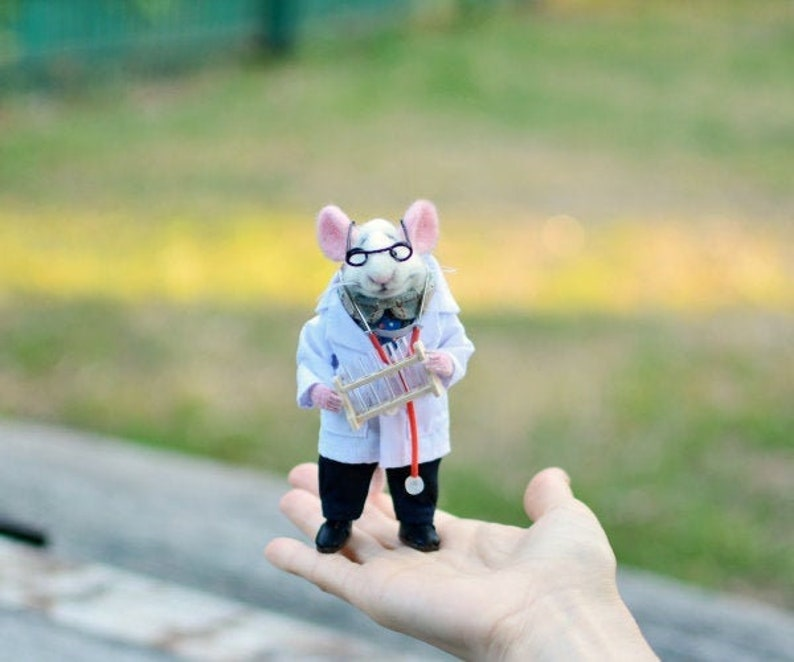 MADE TO ORDER! Mouse doctor Mouse hematologist Mouse in clothes Mouse in а  robe Felted miniatureNeedle Felted Wool Doctor Hematologist