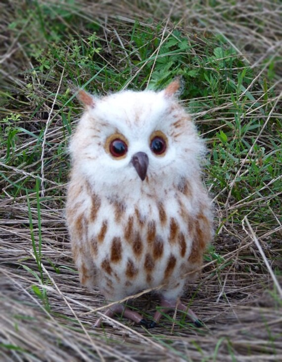 Felted Owl Wool Owl Beautiful Owl Bird Owl Toy Owl Handmade Etsy
