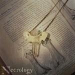 PREORDER Bone + Crystal Necklace, Oddities, Bone Jewelry, Bone Necklace, Oddities Necklace, Witchy Necklace, Taxidermy, Vulture Culture