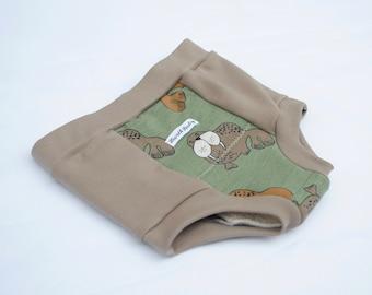 Organic Eco-Training,Organic Underwear,2T-3T,Training Pants,Boys Underwear,Girls Underwear