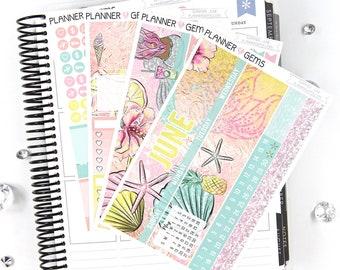 Summer June Monthly View Planner Kit | ~200 Stickers | Planner Stickers | For Erin Condren LifePlanner
