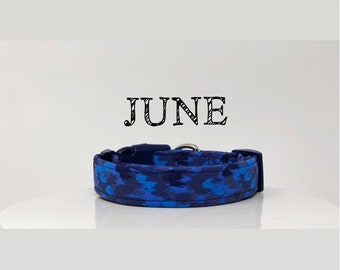 Abstract Inspired Dog Collar in Blue