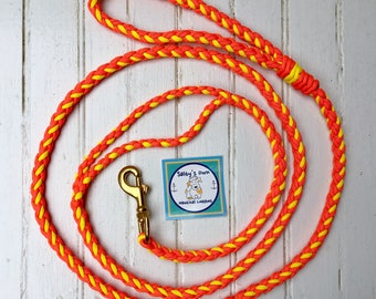 Double Braid Leash- Blaze and Yellow