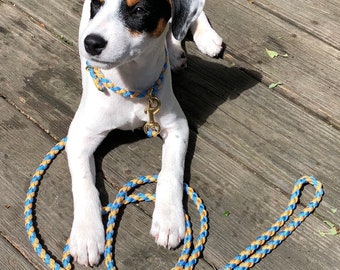 Custom Puppy Gift Set