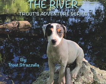The River- Trout's Adventure Series
