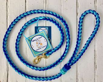 Deluxe Small Dog Leash-Blue&Blue