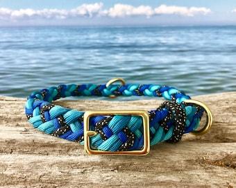 Reef Shark Collar