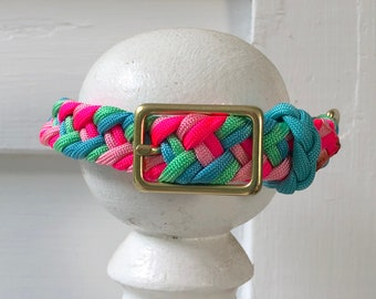 Dunedin Collar