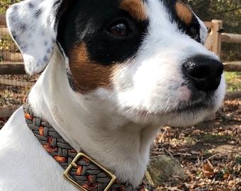 Autumn Forest Collar