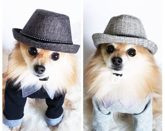 85d3a17f427 Ivy Caps for DOGS CATS HANDMADE dog hats summer hat cowboy