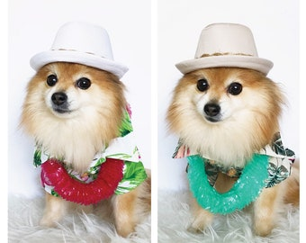 Hawaiian Fedora for DOGS aeee80b8176c