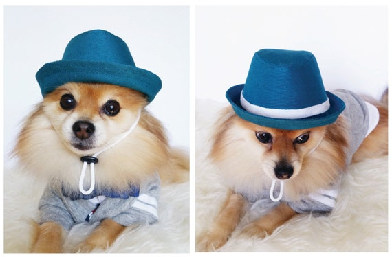 7ade32742ad Fedora for DOGS CATS HANDMADE dog hats dog caps summer