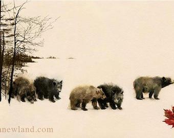 Bears 10x17 Print