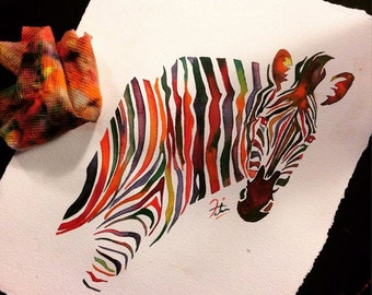 Coloured Zebra
