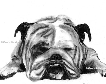 British Bulldog Art - English Bulldog Picture - Bulldog Signed Limited Edition Print - Bulldog Wall Art