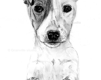 Jack Russell Dog Limited Edition Print Signed by Artist