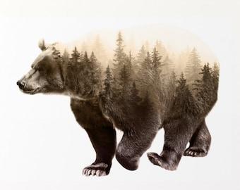 "Printable - Brown Bear Double Exposure Art Print - Instant Digital Download - Digital Art Print - 12"" x 12"" or 30"" x 30"""