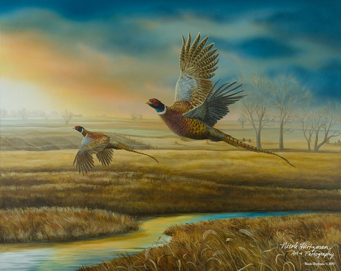 Pheasant Hunting Father's Day Gift Pheasant Painting Pheasant Creek Gift for Dad Ring-necked Pheasant Art Wildlife Print by Nicole Heitzman
