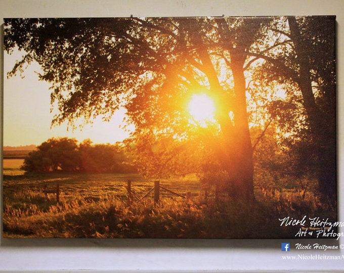 Fenceline Fall Sunset South Dakota Sunset Photography Tree Sunset Photo Tree Silhouette Photo Canvas Print 24x36 Gallery Wrap Canvas Print