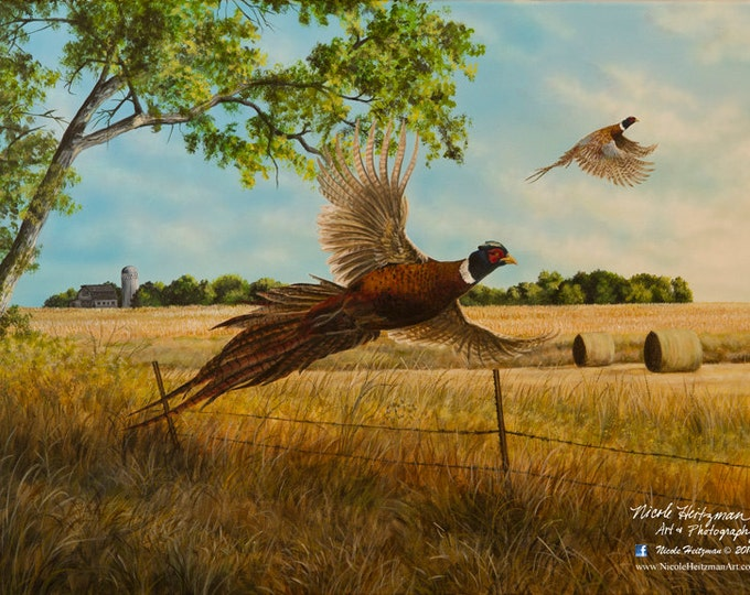 Pheasant Print Back Forty Pheasant Painting Gift for Men Pheasant Art Pheasant Hunting print Back Forty by Nicole Heitzman