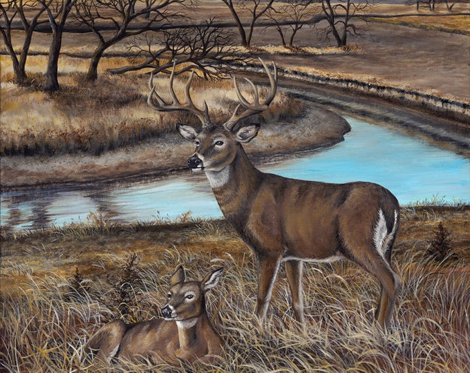 Art the River's Edge Gift for men White-tailed Deer Print Deer Art Deer Painting Wildlife art Man Cave Limited Edition Canvas print Heitzman