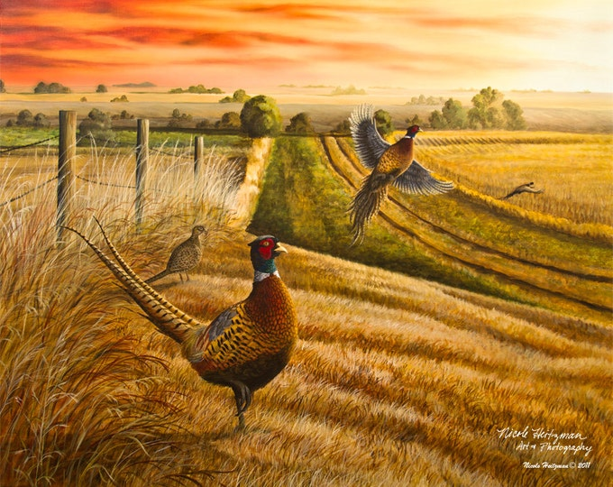 Gift for Dad Pheasant Print Pheasant Art Pheasant Painting Pheasant Hunting Wildlife Art Rooster Road Canvas Print by Nicole Heitzman