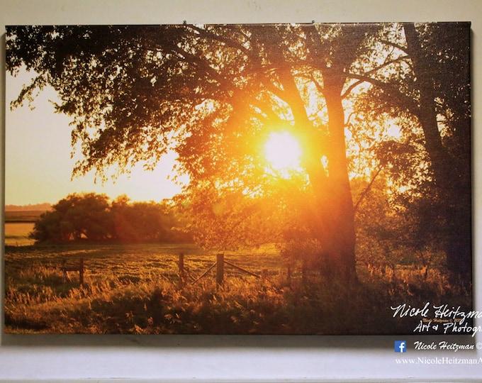 Fenceline Fall Sunset South Dakota Sunset Photography Tree Sunset Photo Tree Silhouette Photo Canvas Print 24x36 Gallery Wrap Canvas Print