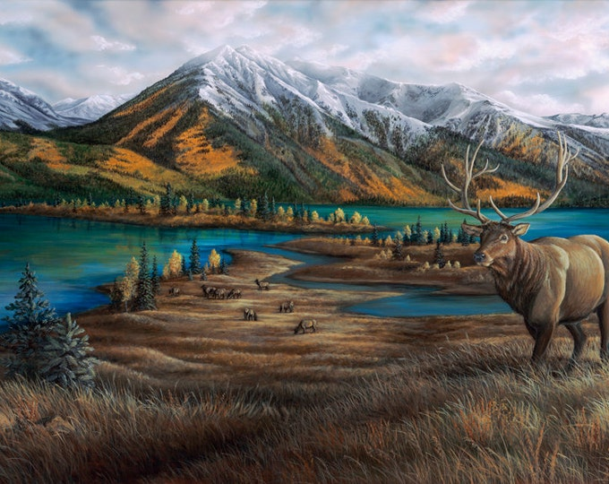 Back Country Guardian Elk Print Elk painting Elk Art Canvas Giclee Print Mountain Scenery Father's Day gift for him dad by Nicole Heitzman