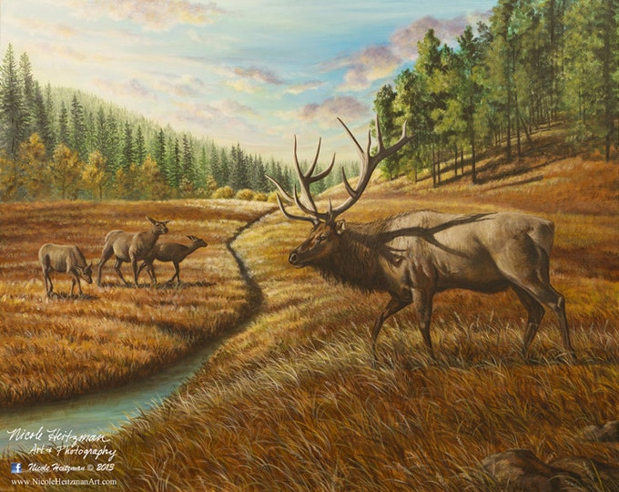 Father's Day gift for Dad Elk Print Elk Art Elk Painting Pleasant Valley Elk Hunting Scene Black Hills Limited Edition Canvas print Heitzman