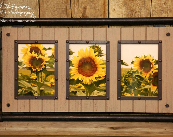Christmas gifts for her Mother's day gift Sunflower Photography Flower Photo South Dakota Photography Steampunk pipe frame Nicole Heitzman