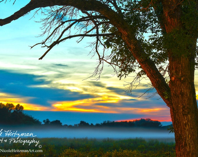 Foggy Sunset Photography Metal print Scenic Photo Spring scenery Summer HDR Photography Cottonwood trees Fog Photo & Sky by Nicole Heitzman