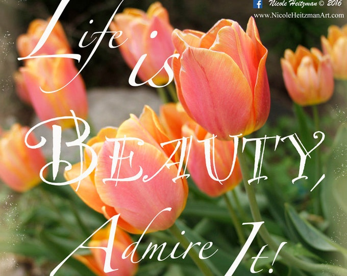 Orange Tulips Spring Summer Flowers Life is Beauty Tulip Photography Quote Flower Decor Orange Decor Gift for her Mom by Nicole Heitzman