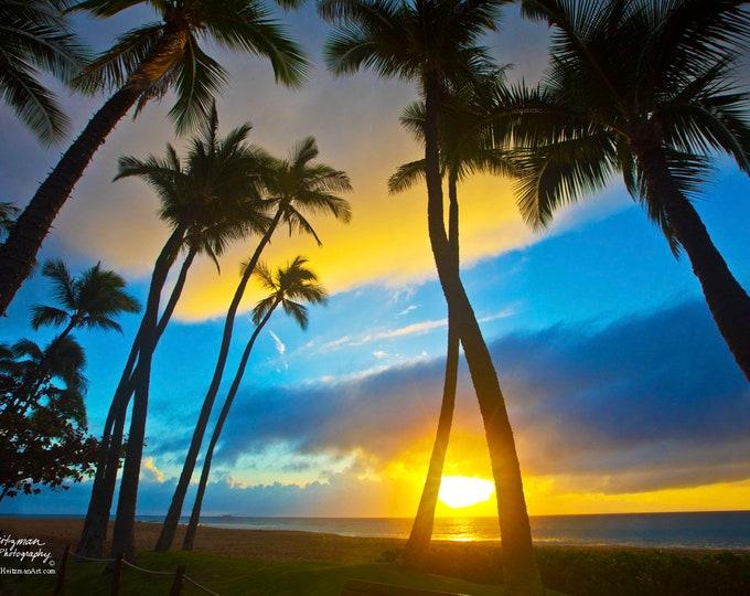 Maui Sunset Hawaii Photo Palm Trees Tropical scenery Ocean photography Kaanapali beach decor Lahaina Ocean Metal Print by Nicole Heitzman