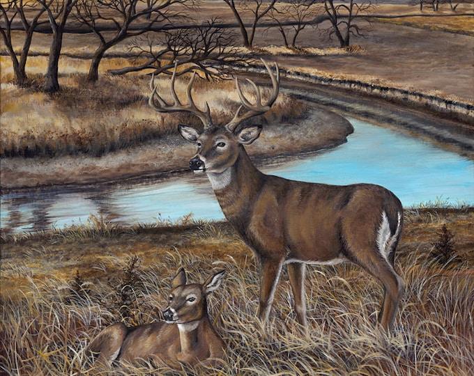 Art the River's Edge Gift for men White-tailed Deer Print Deer Art Deer Painting Wildlife art Man Cave Limited Edition Canvas print Heitzman