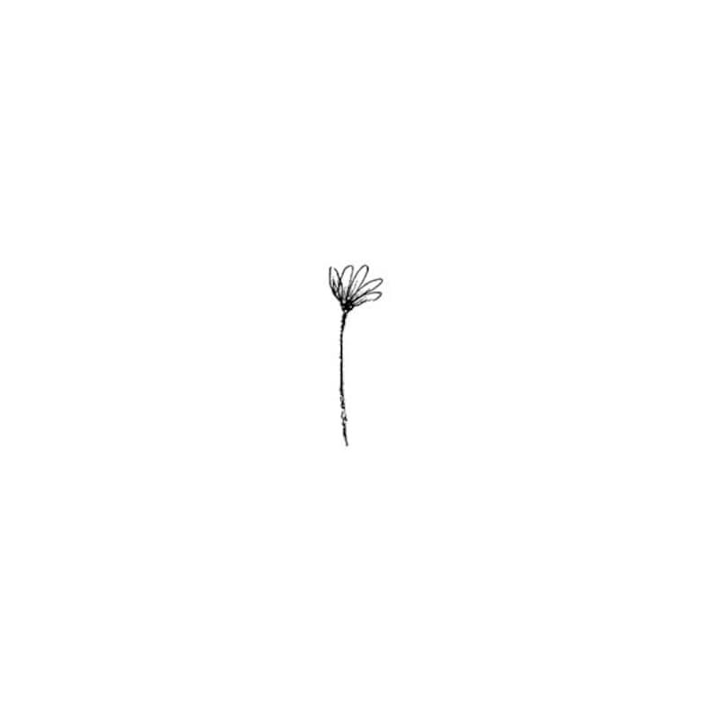 EZ Mounted Rubber Stamp Little Tiny Flower on Stem Altered Art image 0