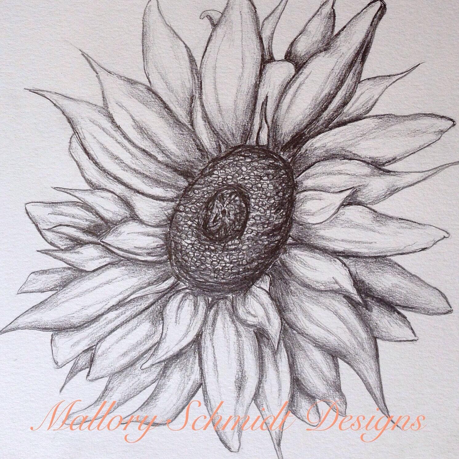 Sunflower Home Decor Original Pencil Drawing Wall Art Etsy