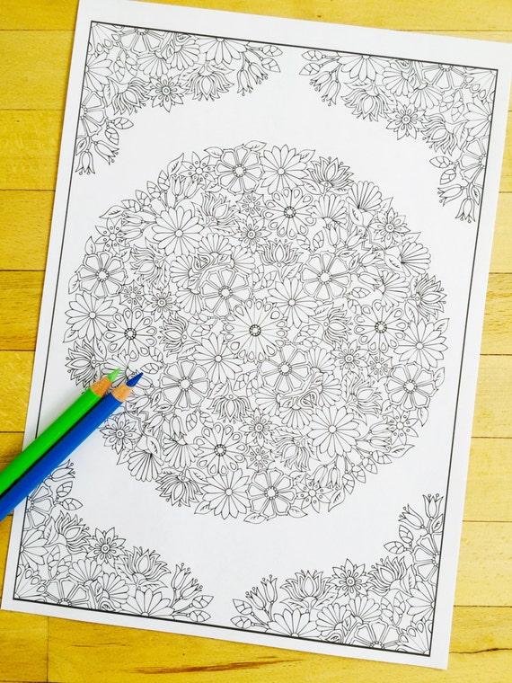 Jardín de flores mano dibujada para colorear adultos página   Etsy