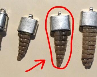Rattlesnake rattles | Etsy