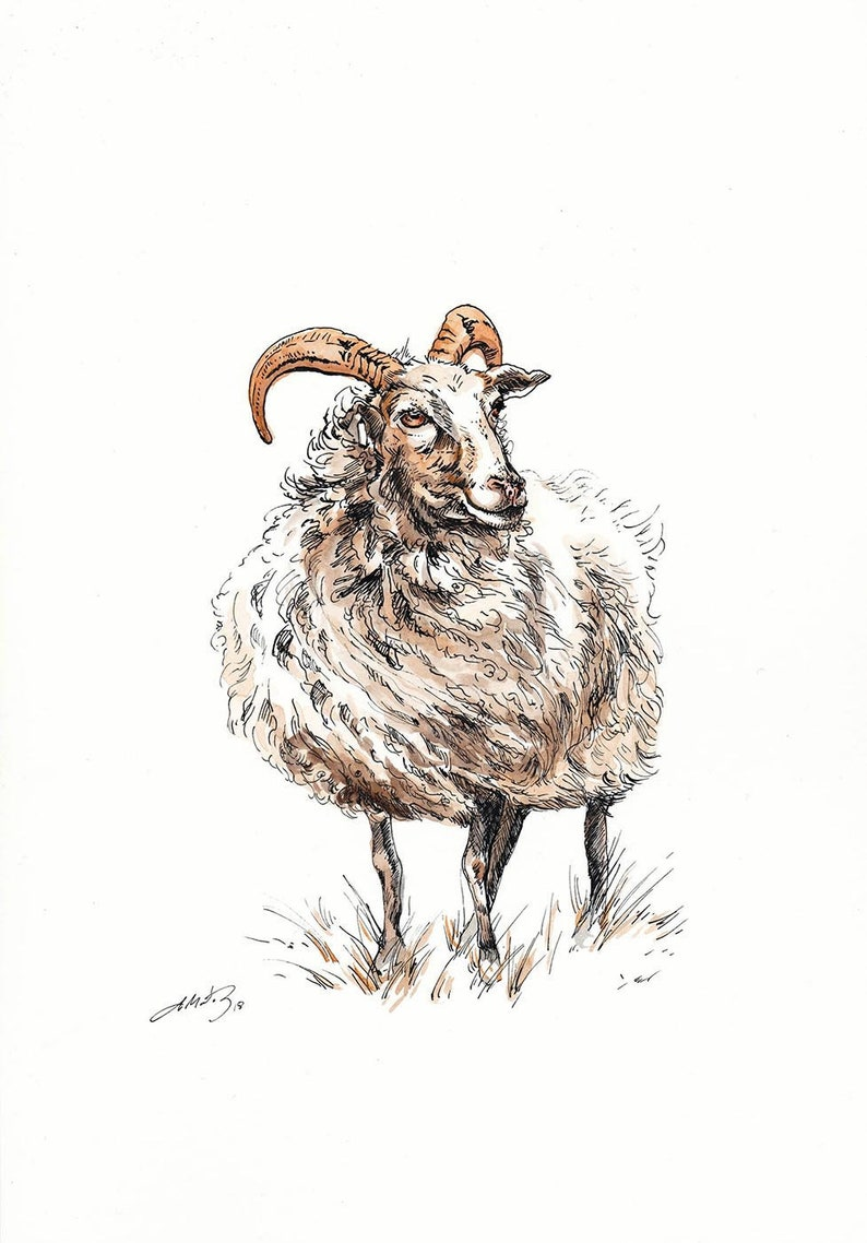 Sheep Horned  Breed  Wall Clock Farming Gift Boxed