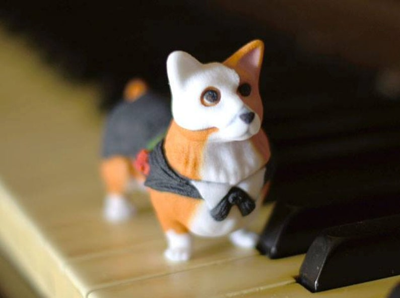 Corgi Of The Opera image 0