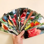 Mushroom Bookmarks - Over 30 Designs - Friendly Fungus Photography