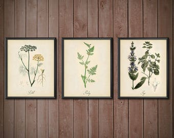 Kitchen Wall Art Set Herbs SET OF 3 - Kitchen Decor Wall Art Set - Kitchen Decor Set Herbs - Kitchen Wall Art - 2402