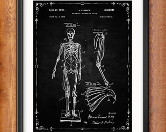 Human Skeleton Poster - Human Skeleton Antique Anatomy Wall Art Poster - Medical Student Gift Idea - Antique Anatomy Home Decor - 1302