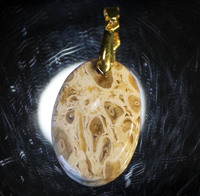 32ct Oval PETRIFIED PALM WOOD Pendant Fully Polished Agate Cabochon Rock Stone Jasper Cab Gold Pinch Bail *