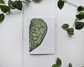 Hosta Leaf | A6 Notebook | Heart Shaped Leaf | Botanical Notebook | Plain Pages