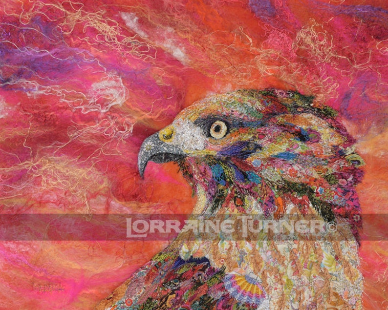Red Tail Hawk at Sunset Giclée image 0