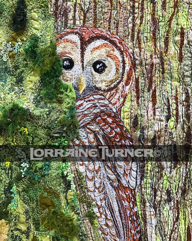 Barred Owl Art Giclée image 0