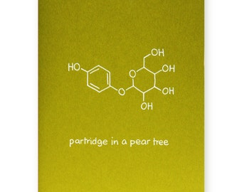 Nerd Christmas Card - Chemistry Holiday Card - Partridge in A Pear Tree Card - Christmas Carol